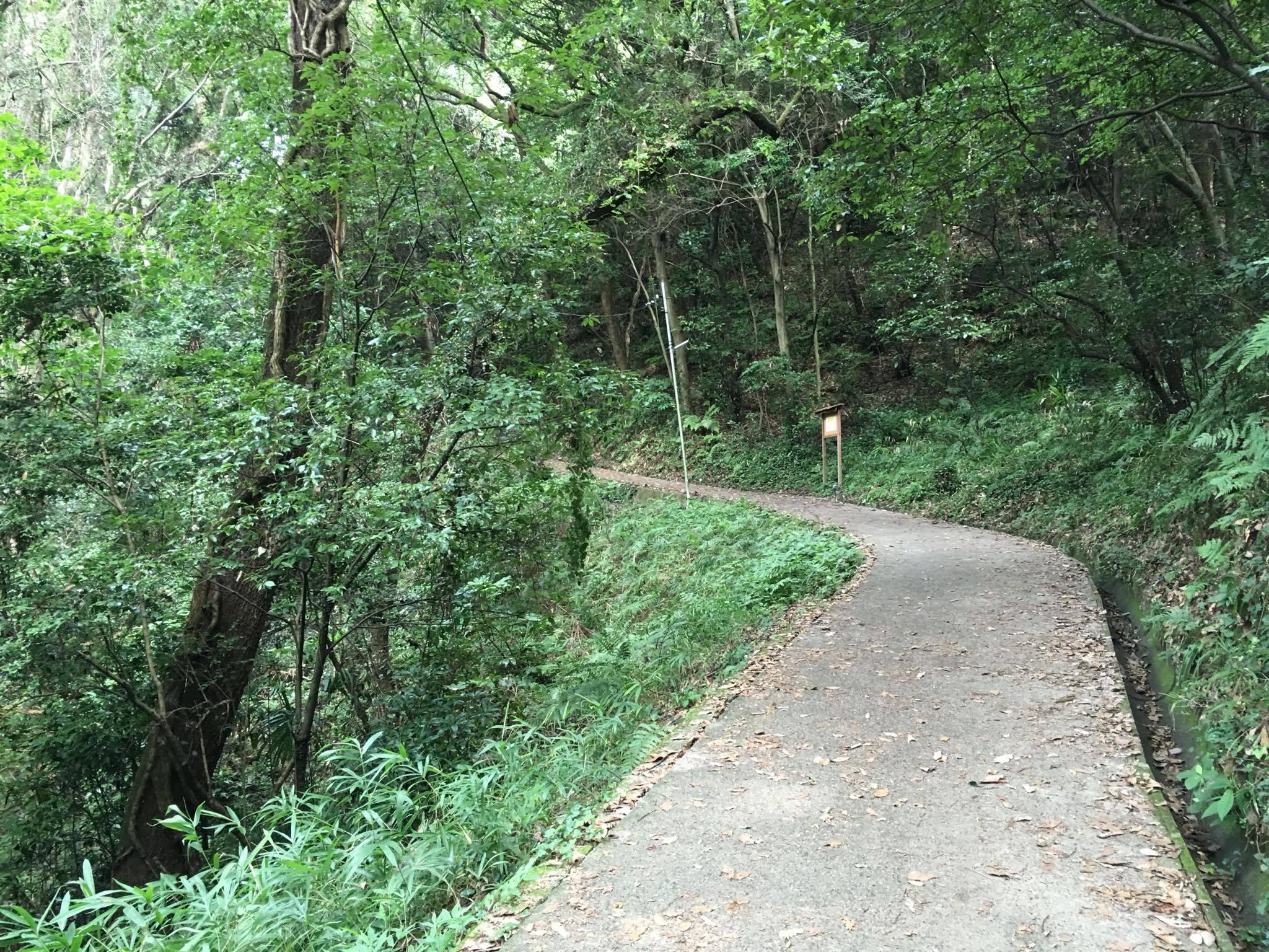 大門への道13