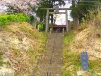 南方千本桜6石神社