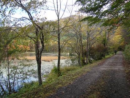 沼周辺の道