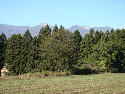 畑から那須山