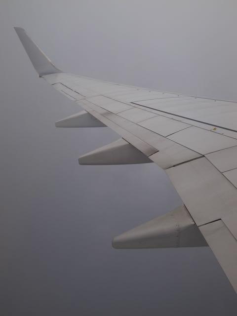 JAL 翼 - 1 (1)