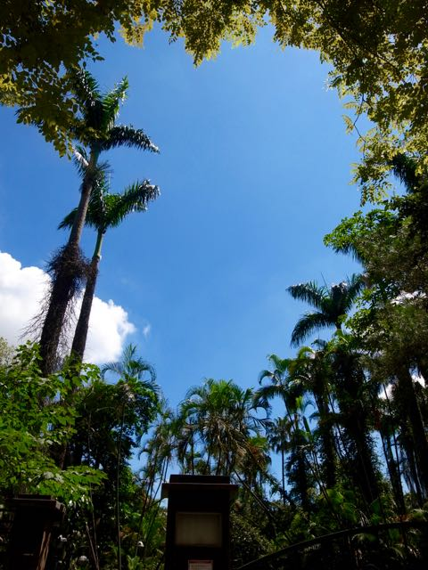 台北植物園 - 1 (6)