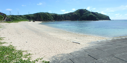 海岸の貝001