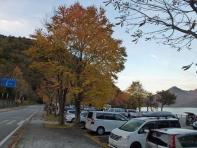 立木観音前の駐車場