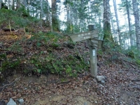 登山道の中間点