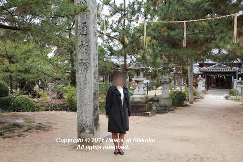 amayako-0314-2600.jpg