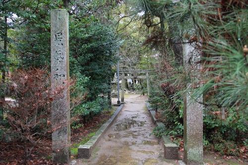 amayako-0314-2618.jpg