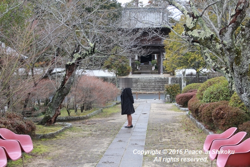 amayako-0314-2619.jpg