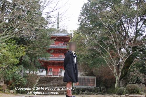 amayako-0314-2661.jpg
