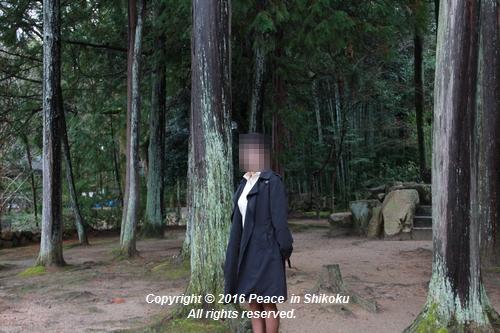 amayako-0314-2665.jpg