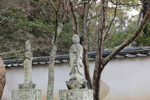 amayako-0314-2681.jpg