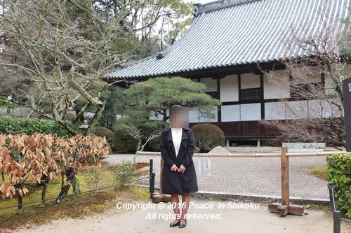 amayako-0314-2686.jpg