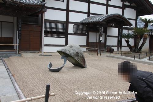 amayako-0314-2691.jpg