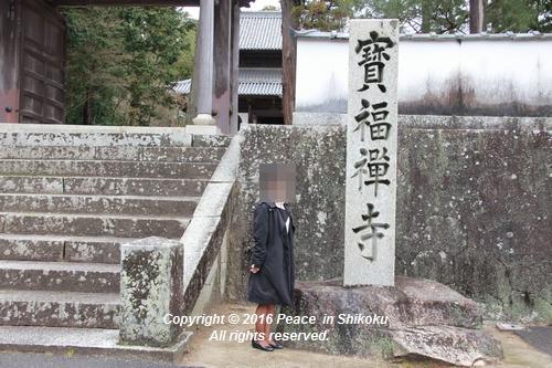 amayako-0314-2712.jpg