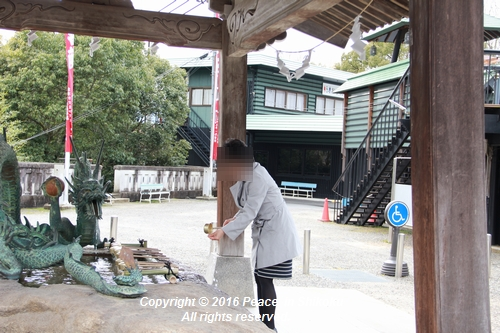 amayako-0314-2730.jpg