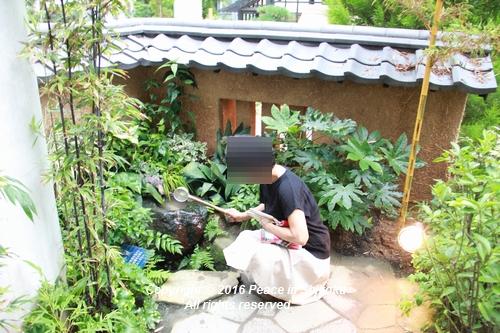 kiseki-0829-9049.jpg