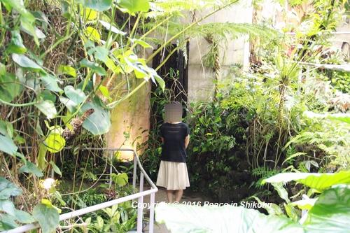kiseki-0829-9139.jpg