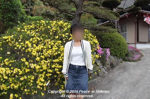 mima-0418-4245.jpg