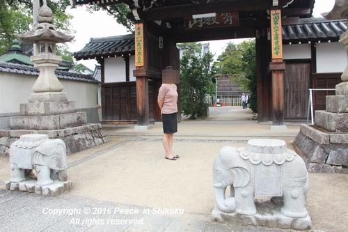 saijyo-0912-9589.jpg