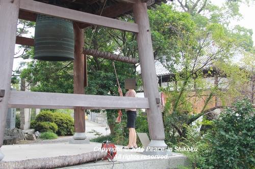 saijyo-0912-9592.jpg