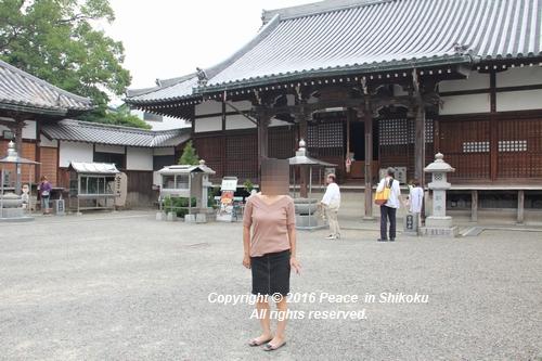 saijyo-0912-9595.jpg