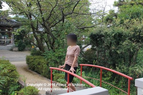 saijyo-0912-9612.jpg