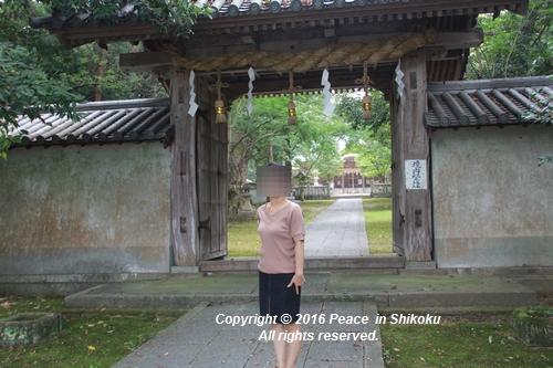 saijyo-0912-9617.jpg