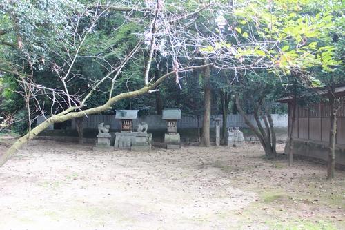 saijyo-0912-9622.jpg