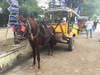 馬車タクシー