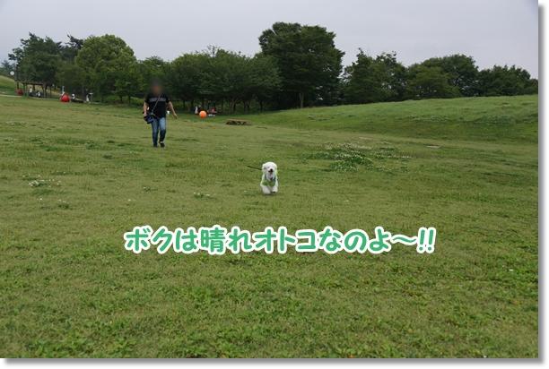まんのう公園 キャンプ最終日2