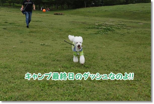 まんのう公園 キャンプ最終日3