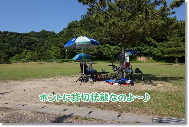 広い芝生広場と海の見える公園で5