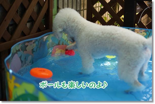 水遊びは楽しい♪6