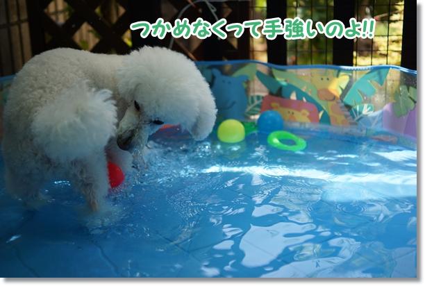 水遊びは楽しい♪7