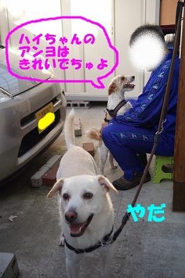 DSC09701.jpg