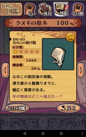 KNG-03.jpg