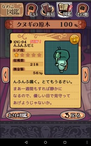 KNG-04.jpg