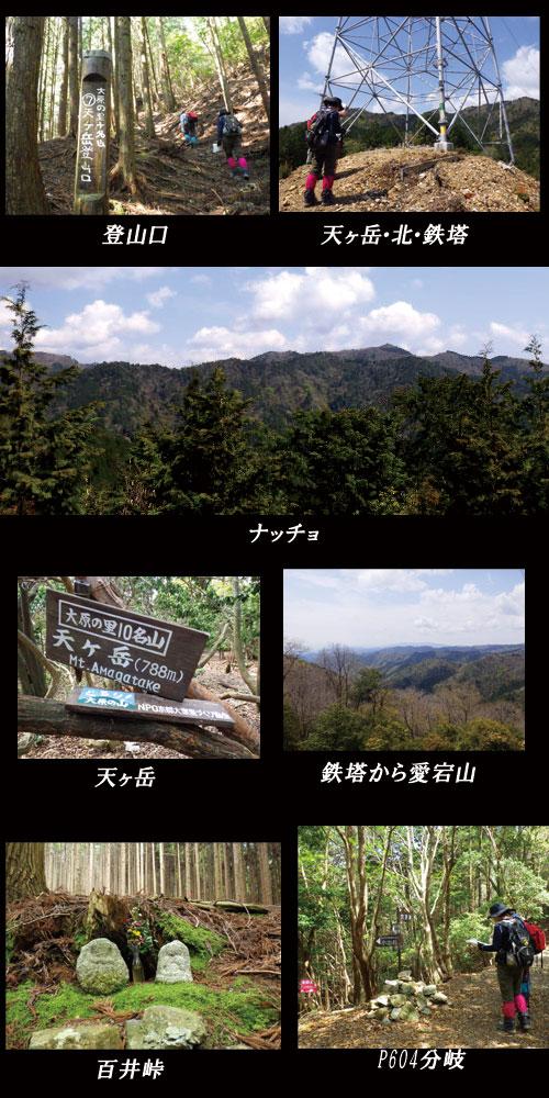 天ヶ岳2016/4/23