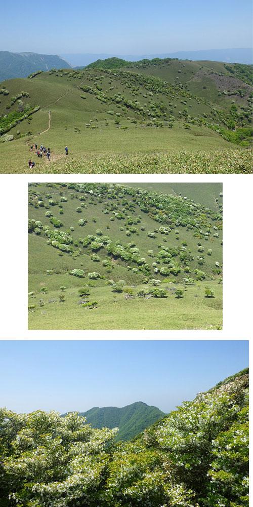 鈴鹿:竜ヶ岳(1,100m)2