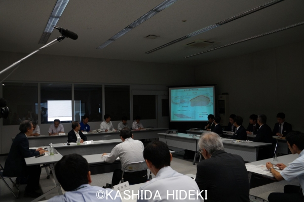 160608静岡市協議会