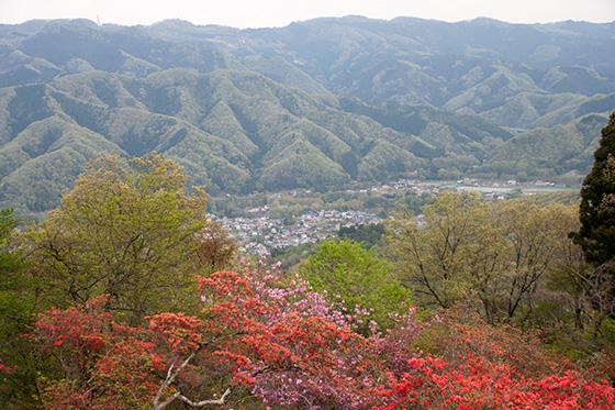 山からの景色_2410