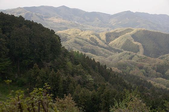 山からの景色2_2534