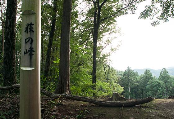 萩の峠_0822