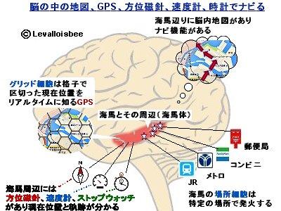脳内地図とGPS方位磁針速度計時計でナビる