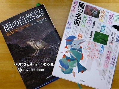 2冊の雨の本downsize