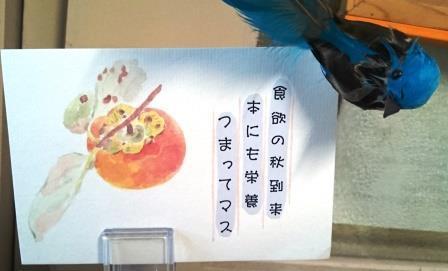図書食欲の秋02