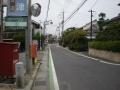 sakamoto6.jpg