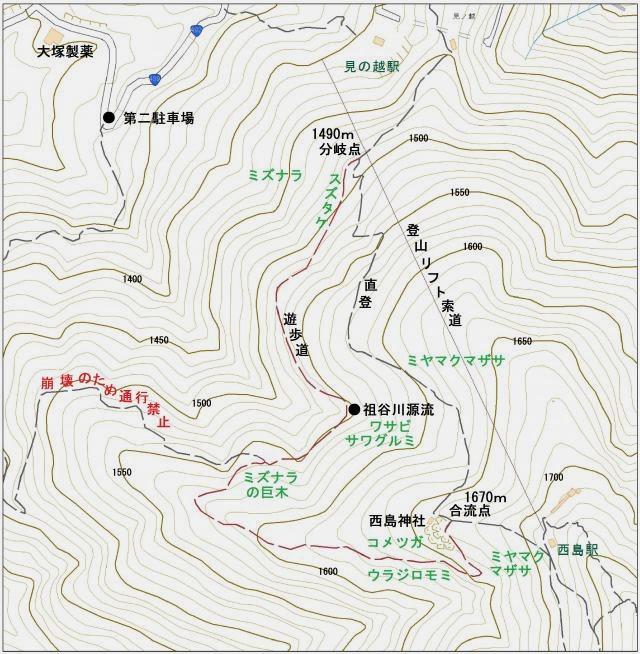 剣山自然観察おすすめコース
