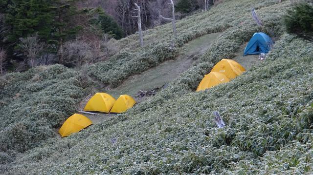 登山リフト終点の西島駅の直下のキャンプ場に、テントが6張、無料です。