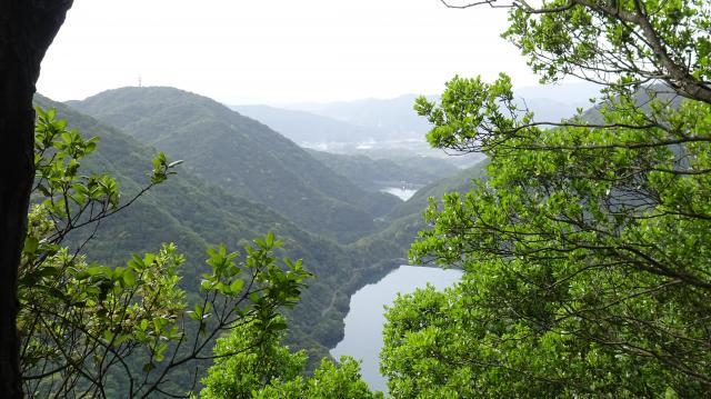 尾根から大城池方面を俯瞰する